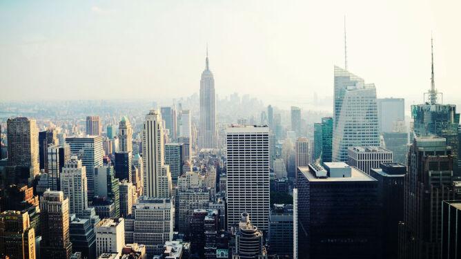 Chikungunya zaatakuje w Nowym Jorku?