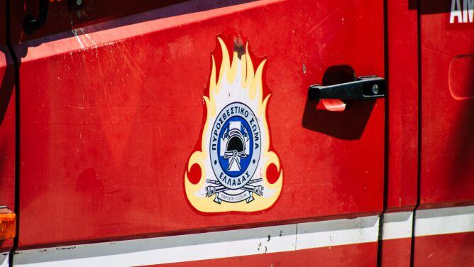 Pożar lasu w Grecji. Ewakuowano kilkaset dzieci z obozu letniego